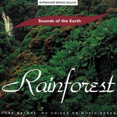 CD Rainforest