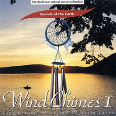 CD Wind Chimes 1