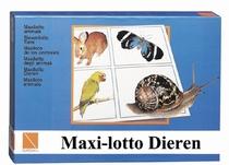 Maxi-lotto Dieren