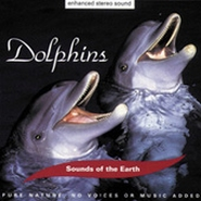 CD Dolphins
