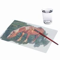 Aqua-schilderen
